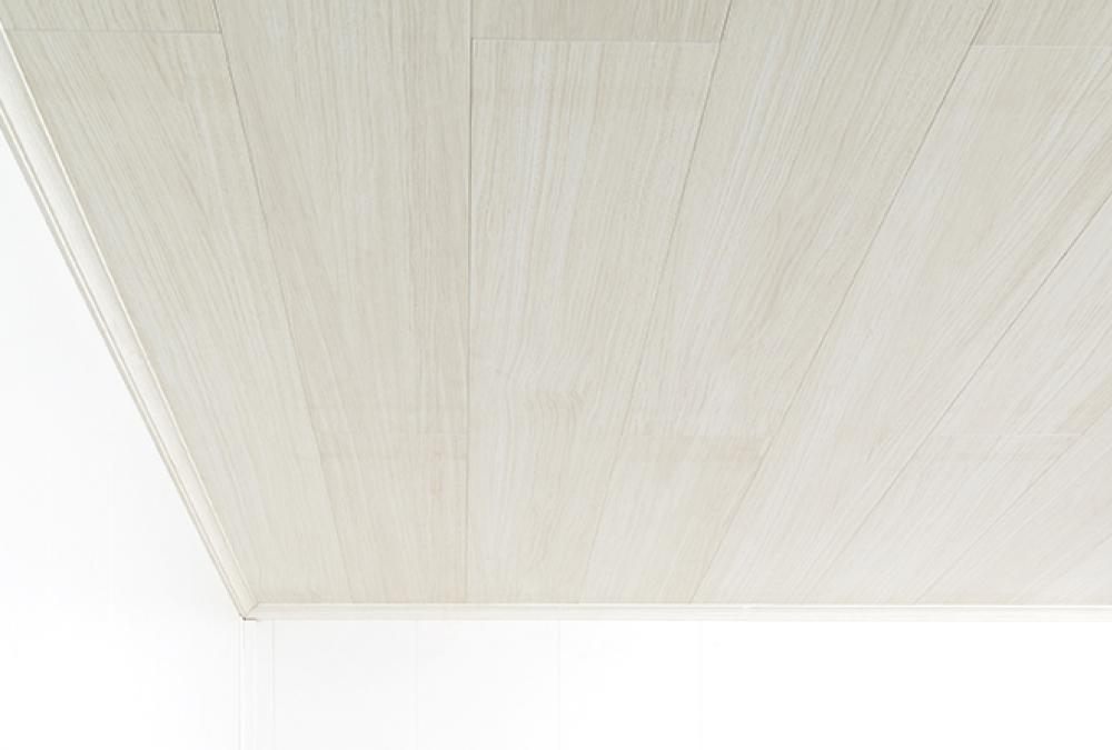 afbeelding              Ceiling panels